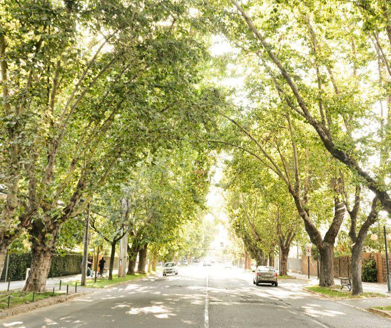 Nosotros Puerto Capital