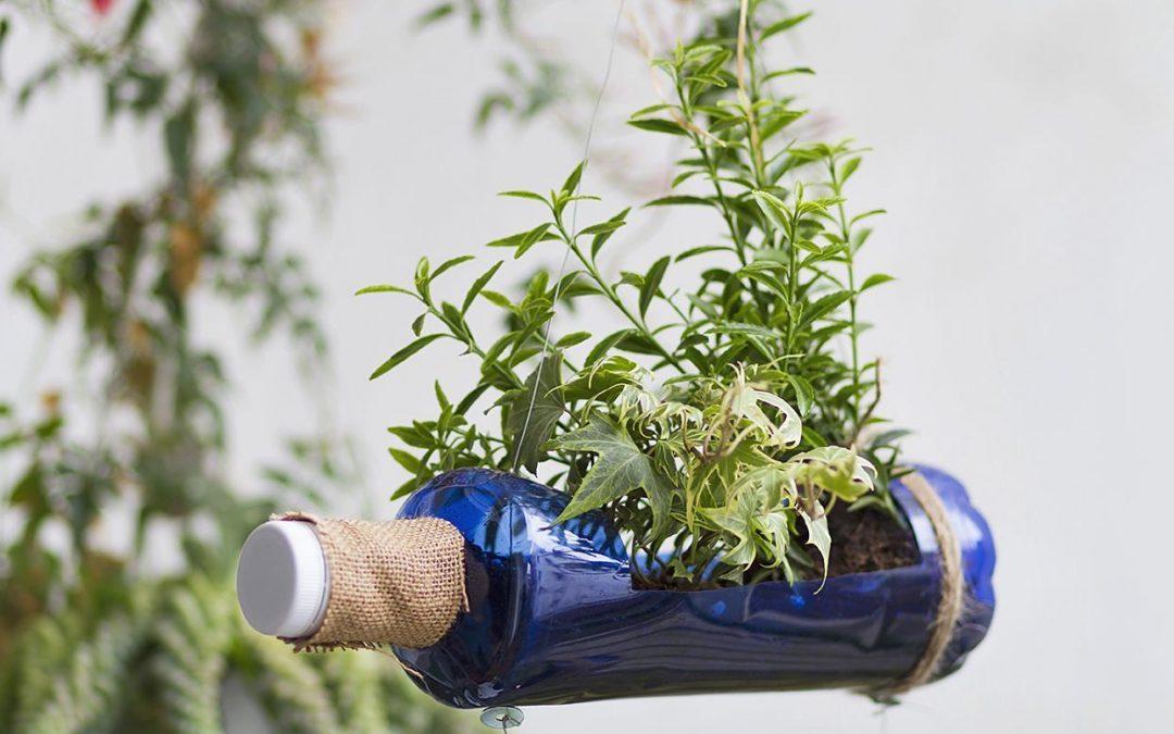 Reciclaje y decoración: Botellas plásticas con valor agregado